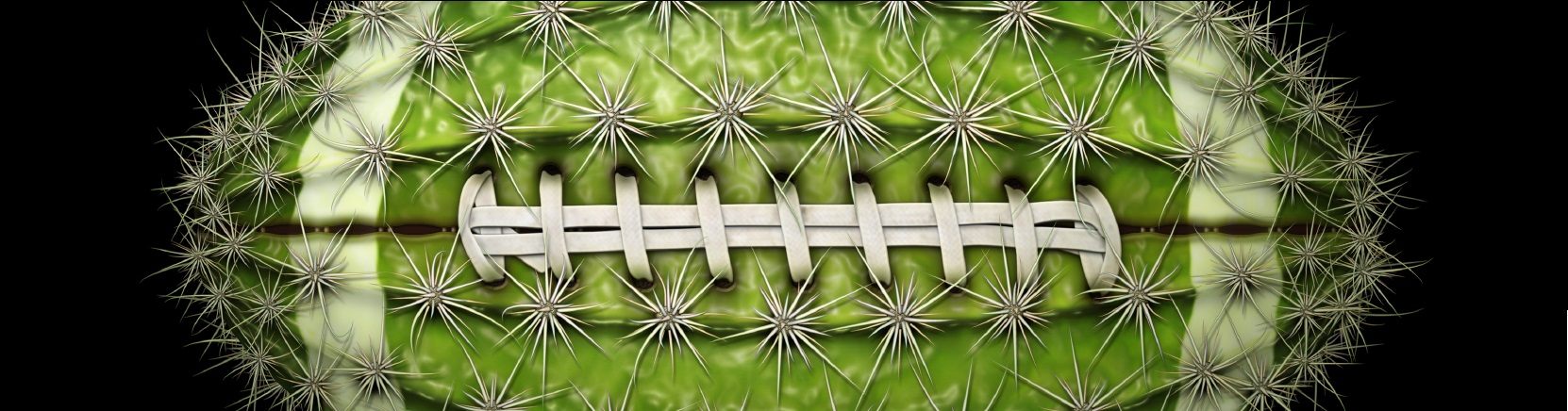 Fiesta/Cactus Bowls